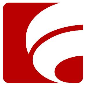 Brown Group Retail Inc